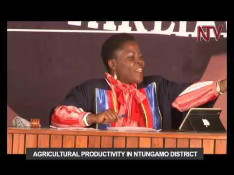 The People's Parliament: Has agricultural productivity in Ntungamo district been fully exploited?