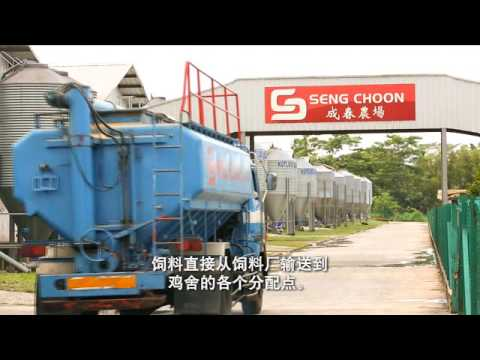 Seng Choon Corporate Video English with Mandarin subtitles