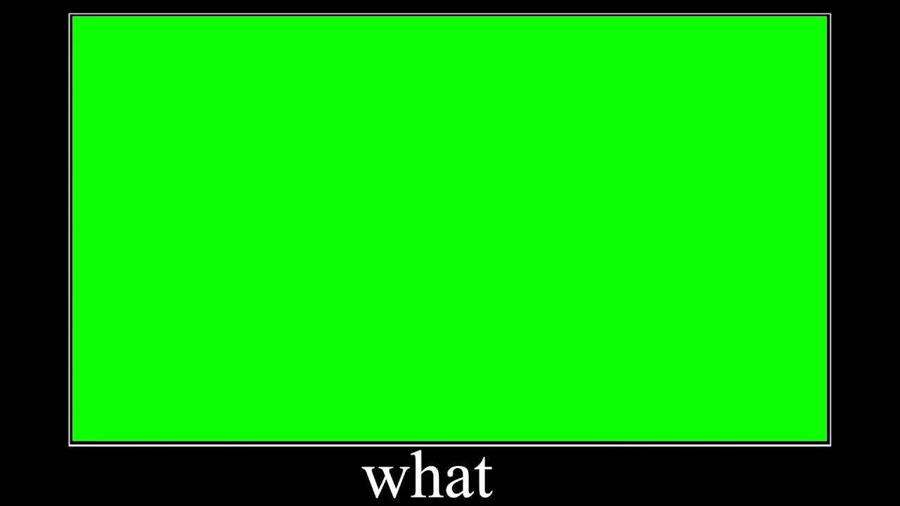 "Download Sanctuary Guardian ""What"" meme green screen"