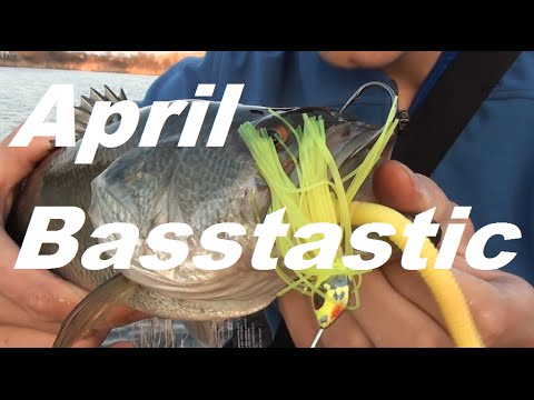 April Basstastic-Slammin' Spring Spinnerbait Bass