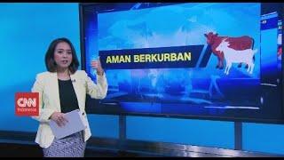 Tips Aman Berkurban Di Hari Raya Iduladha 2020