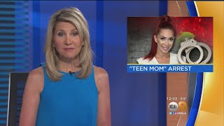 'Teen Mom' Star Farrah Abraham Punches Security Guard At Beverly Hills Hotel