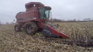 case ih 2388 with mud hog axle in some mud