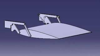 Flap kinematics