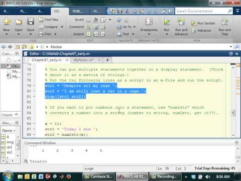 Writing Output Statements in Matlab