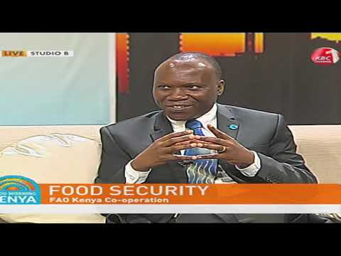 Good Morning Kenya - Food Security