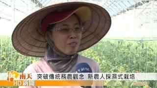 1201突破傳統務農觀念 新農人採濕式栽培