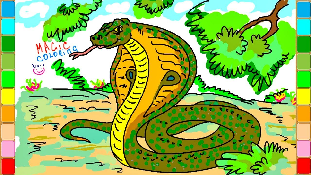 Cobra snake drawing asian animal coloring pages ❈magic coloring❈