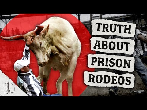 Exploitation Or Rehabilitation?! The Truth About Prison Rodeos In The United States...