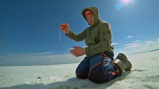 Рыбалка Весной ДУБАСИМ ОКУНЯ и Ждём ВЫХОД ПЛОТВЫ Последней лёд 2021