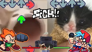 Pop Cat VS Cat that goes a (Friday Night Funkin - Blammed) FNF Meme