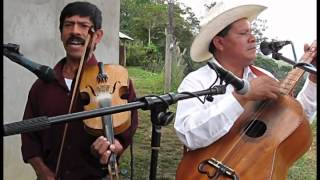 Trio Felicidad - La Rosita - Tierra Blanca Ejido, Xilitla