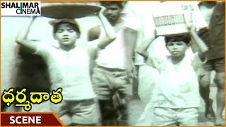 Dharma Daata Movie || ANR's Sons Work Hard and Make Some Money || ANR, Kanchana || Shalimarcinema