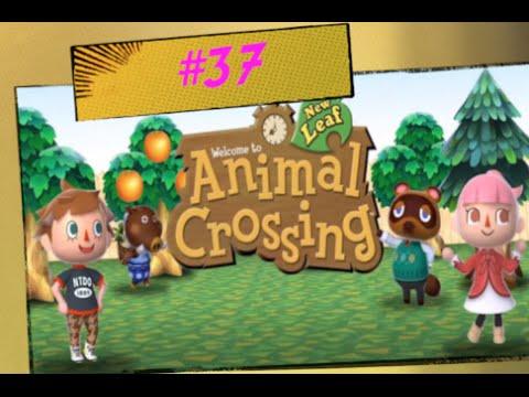 Animal Crossing New Leaf 37 Cambio Pettinatura
