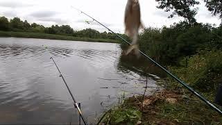 Рыбалка в июле. Кому как