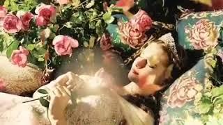 أجمل اغنية كوردية رومانسية/ كر دنكي تا تي من لايك والاشتراك بالقناة ليصلك المزيد