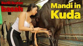 Berlli Mandi in KUDA!!! ternyata beneran....