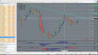 Forex Strategy Secrets Trading Room Pip count