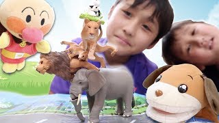 アニアのライオン(ワイルドバージョン)とアフリカゾウ、そして母ライ...
