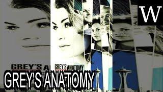 GREY'S ANATOMY (season 14) - WikiVidi Documentary