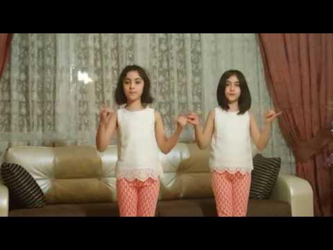 İkizler İşaret Dili Oynaya Oynaya Gelin Çocuklar