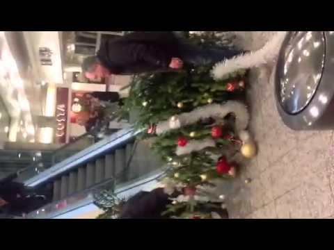 A man, an escalator and a Christmas tree. - YouTube