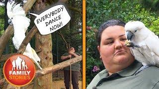 Alle Vögel sind schon da: Praktikum im Zoo | Volles Pfund Jasmine | Family Stories