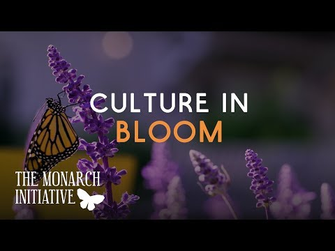 The Monarch Initiative: Sustainability Culture Blooms in the Audubon Park Garden District