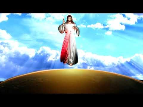 Господь Спаситель Иисус Христос Вера Новой Церкви и Новых Небес