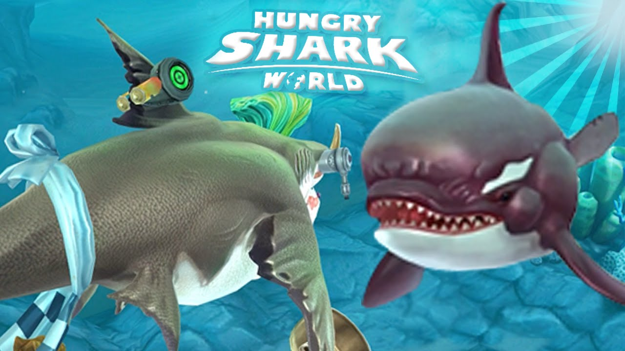 killer whale pet will!! - hungry shark world | ep 13 hd - youtube