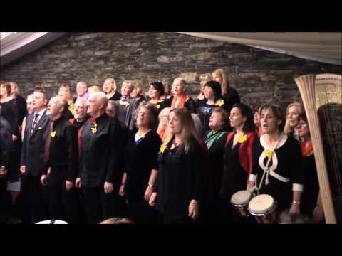 St. David's Day Concert at Cardigan Castle part 2