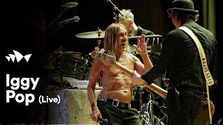 "Iggy Pop - ""I Wanna Be Your Dog"" | Live at Sydney Opera House"