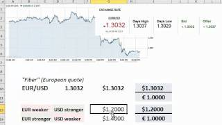 FRM: How to read a spot foreign exchange (FX) rate