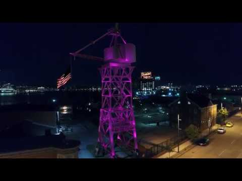 Save The Crane - Baltimore Museum of Industry