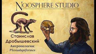 Антропология: Plesiadapiformes. Станислав Дробышевский