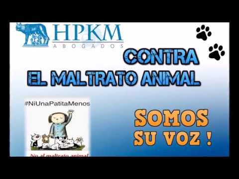 HPKM Abogados - Contra el Maltrato Animal