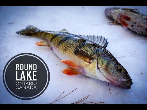 Round Lake Ontario Canada/ICE FISHING/2018