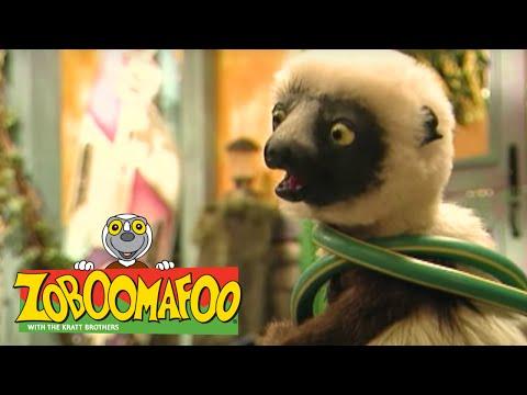 Zoboomafoo 122 - Pets (Full Episode) - YouTube