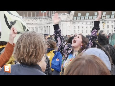 Exclusive Video: Climate Strike Chaos as Antifa, Extinction Rebellion Clash with London Police