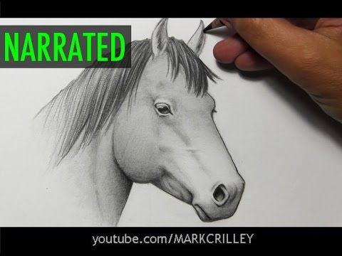 how-to-draw-a-horse-[narrated-step-by-step]
