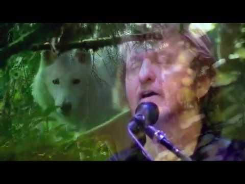 Jon Anderson - Change We Must  4K