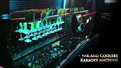 11-13 Passenger Mercedes Party Bus