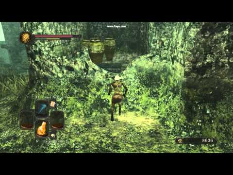 Dark Souls 2 Sotfs Shaded Woods Jump To Lion Mage Set Youtube