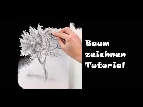 Zeichnen lernen: Baum zeichnen mit Bleistift