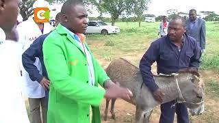 Wafugaji washerehekea manufaa na faida za punda Kajiado