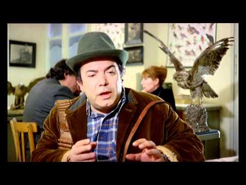 Vieni Avanti Cretino (Trailer)