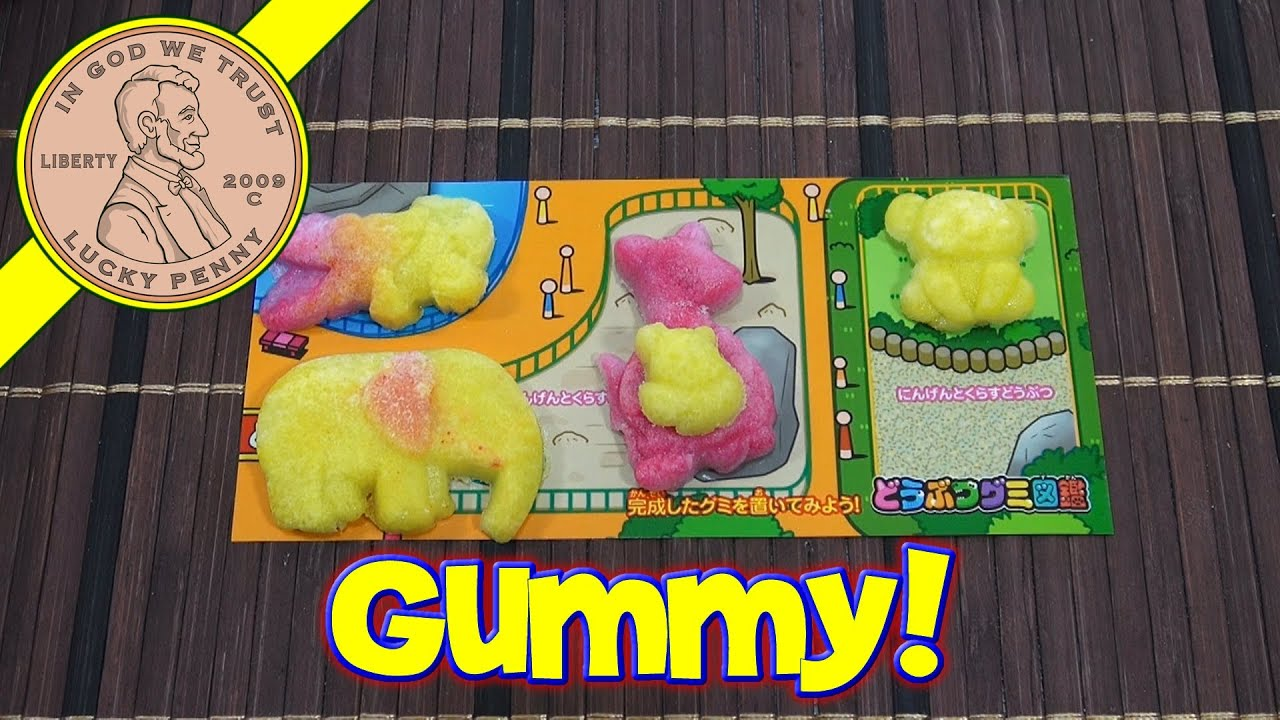 Kracie Animal Gummy Book