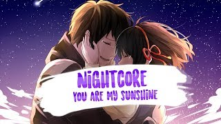 ⌠Nightcore⌡ ⇥ You Are My Sunshine | Johnny Cash (Cover) (Lyrics)