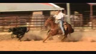 saulo and sorrel horse