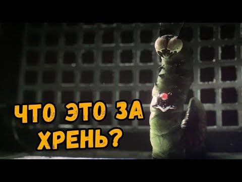 ШАЗАМ - РАЗБОР СЦЕН ПОСЛЕ ТИТРОВ